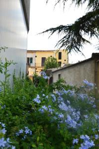 La casa Bianca di Maria - AbcAlberghi.com
