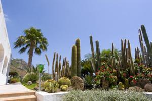 Hotel Villa Miralisa, Hotels  Ischia - big - 33