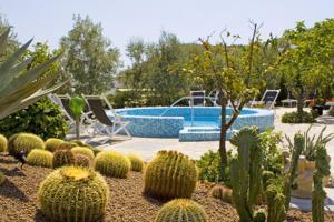 Hotel Villa Miralisa, Hotels  Ischia - big - 24