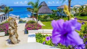 Las Verandas Hotel & Villas, Resort  First Bight - big - 64