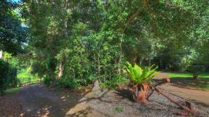 Hideaway Retreat, Hotely  Burnt Pine - big - 4