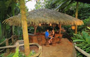 The Springs Resort & Spa at Arenal (17 of 108)