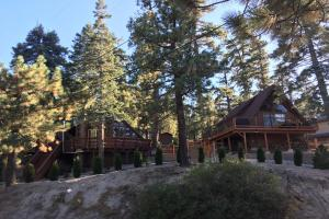 Castle Rock Cabin - Hotel - Big Bear Lake