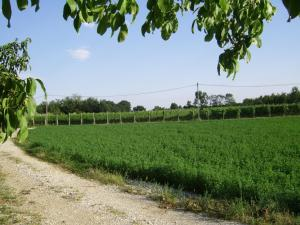 Agriturismo La Falcadura