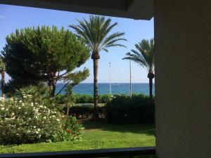 Cannes Terrace Beach Front & Sea view, Apartments  Cannes - big - 139
