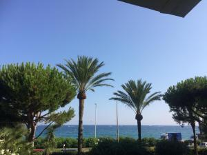 Cannes Terrace Beach Front & Sea view, Apartments  Cannes - big - 138