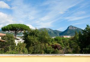B&B Massico Apartments, B&B (nocľahy s raňajkami)  Sant'Agnello - big - 10