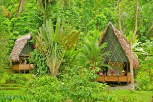 Standard Double Room Finca Exotica Eco Lodge
