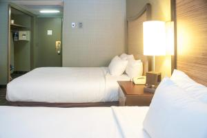 Fremont Hotel & Casino (17 of 35)