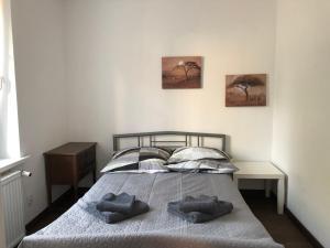 Apartament Matejki 74