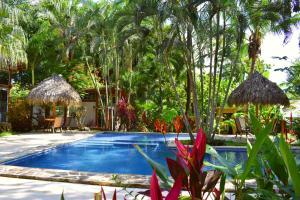 Fuego Lodge, Hotely  Pláž Santa Teresa - big - 14