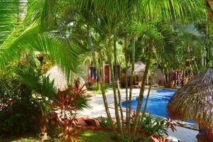 Fuego Lodge, Hotely  Pláž Santa Teresa - big - 29