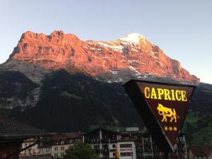 Residence Caprice - Chalet - Grindelwald