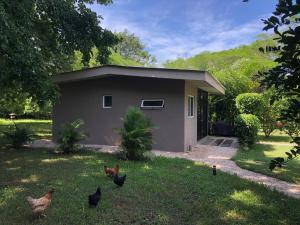 Villas Onda del Bosque, Dovolenkové domy  Santa Rosa - big - 20