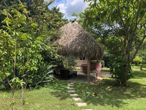 Villas Onda del Bosque, Dovolenkové domy  Santa Rosa - big - 27