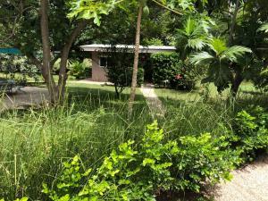 Villas Onda del Bosque, Dovolenkové domy  Santa Rosa - big - 28
