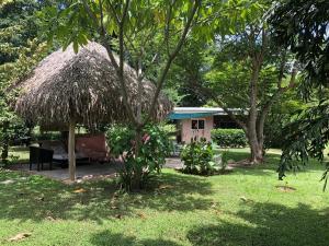 Villas Onda del Bosque, Dovolenkové domy  Santa Rosa - big - 34