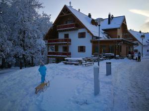 Bolfenk Pohorje Ski Apartment