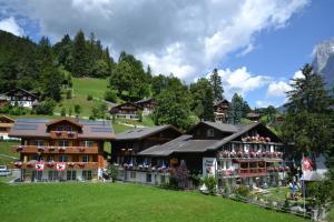 Hotel Caprice - Grindelwald, Отели  Гриндельвальд - big - 1