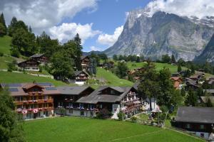 Hotel Caprice - Grindelwald, Hotels  Grindelwald - big - 61