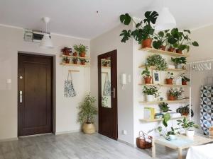 Urban Jungle Green Apartment
