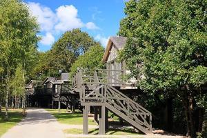 Domy na Drzewach - Dolina Charlotty