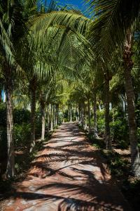 Isla Bella Beach Resort (27 of 83)