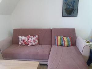 Apartman Rankovic - Hotel - Divcibare