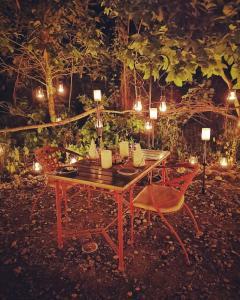 Barahi Jungle Lodge (28 of 72)