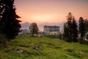 Hotel Villa Honegg (1 of 58)