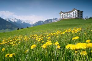 Hotel Villa Honegg (15 of 58)