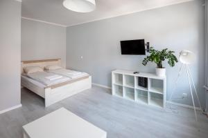 Silver Vision Apartment Rynek
