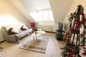 Colmar Historic Center - Cosy Appartement TURENNE 2 - BookingAlsace