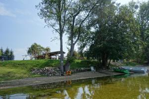 Zielony Domek Lubieszewo