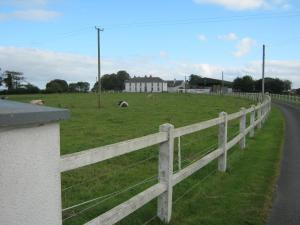 Castletown House, Country houses  Donaghmore - big - 19