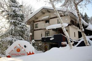 PHOENIX HOTEL by Hakuba Hotel Group - Hakuba 47