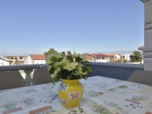 Apartment Lamešić.1, Appartamenti  Vir (Puntadura) - big - 14