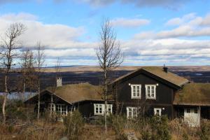 Torshaug 4 bedroom cabin - Hotel - Gol