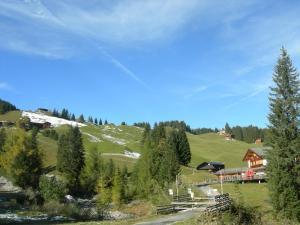 Berghaus Schifer, Inns  Klosters Serneus - big - 11