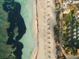 Gecko Hotel & Beach Club (3 of 68)