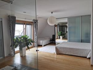 Angel Plaza Loft Apartment 140m2