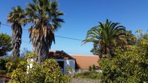 Casa la Caña, Puntagorda - La Palma
