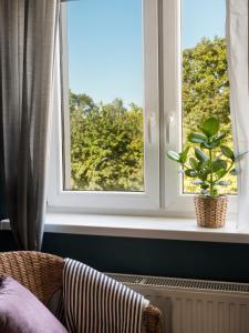 Green view apartment Kochanowskiego