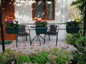 Ludwig Guesthouse, Penziony  Lagodechi - big - 36
