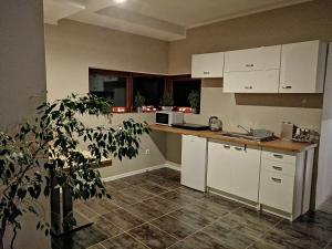 Apartament Mountain View