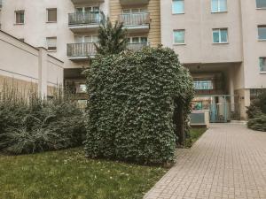 Apartament Kwiatkowskiego