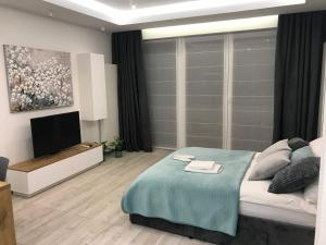 DbD Apartament Gray Turkus Studio