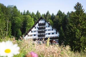 Hotel Tisa Pohorje