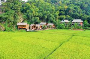 Little Mai Chau Home Stay