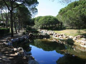 Algarve Praia Verde